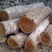 tipe potongan kayu